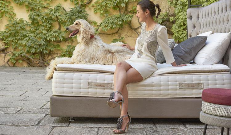 Essenzia Dormire colchón Privilege en Maxim Confort Mallorca